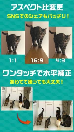 iPhone、iPadアプリ「撮る猫」のスクリーンショット 5枚目