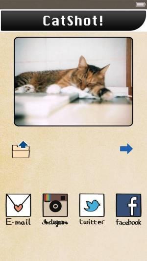 iPhone、iPadアプリ「CatShot! Lite」のスクリーンショット 4枚目