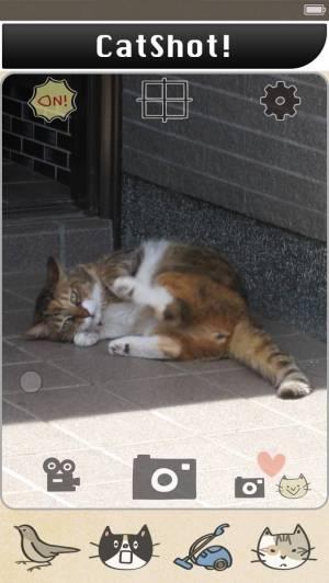 iPhone、iPadアプリ「CatShot! Lite」のスクリーンショット 1枚目
