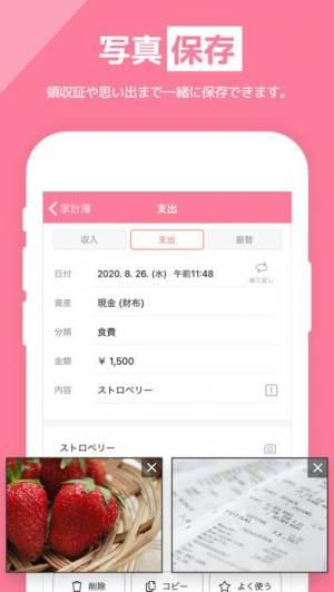 iPhone、iPadアプリ「家計簿 - らくな家計簿   簡単!人気の家計簿(かけいぼ)」のスクリーンショット 5枚目
