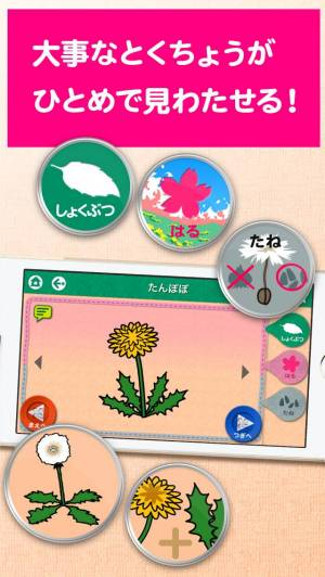 iPhone、iPadアプリ「パパドリルのお受験ずかん」のスクリーンショット 4枚目