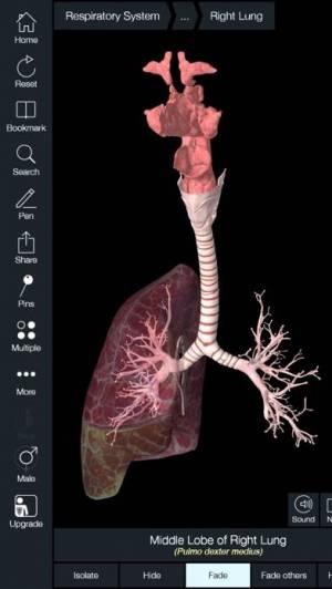 iPhone、iPadアプリ「Essential Anatomy 5」のスクリーンショット 3枚目