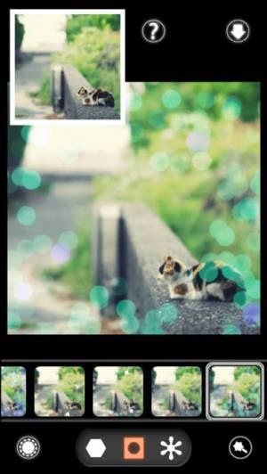 iPhone、iPadアプリ「BokehPic-かわいいフィルターが満載の写真加工カメラアプリ!無料で写メをぼかして画像編集!」のスクリーンショット 1枚目