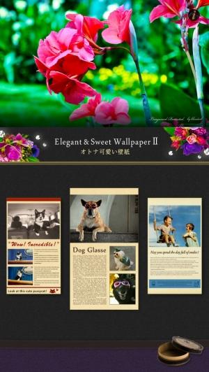 iPhone、iPadアプリ「オトナ可愛い壁紙 Ⅱ - Elegant & Cute Wallpapers - かわいい待ち受けで楽しもう!」のスクリーンショット 4枚目