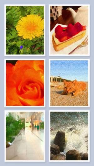 iPhone、iPadアプリ「絵画カメラ by SILKYPIX」のスクリーンショット 5枚目