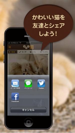 iPhone、iPadアプリ「うごく猫 -激かわ猫満載のうごく猫GIFまとめアプリ。毎日更新される爆笑ねこGIFや癒しねこGIFがいつでも見れる-」のスクリーンショット 3枚目
