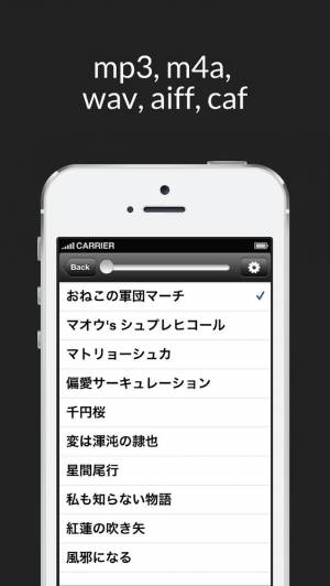 iPhone、iPadアプリ「隠しMP3プレイヤー」のスクリーンショット 4枚目