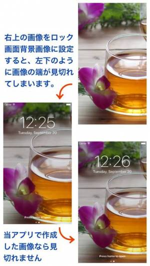 iPhone、iPadアプリ「視差うめ - 視差効果対応画像変換」のスクリーンショット 1枚目