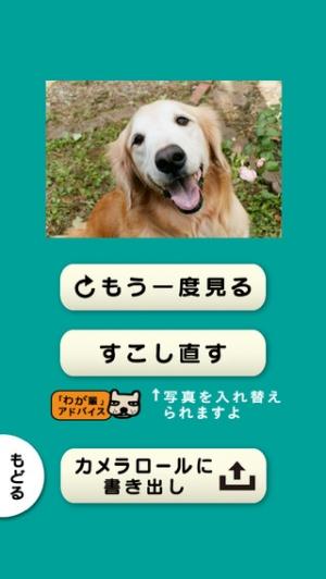 iPhone、iPadアプリ「スライドショー作成アプリ「わが輩は、犬」思い出ぽん!」のスクリーンショット 4枚目