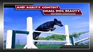 iPhone、iPadアプリ「小型犬の美しさと俊敏コンテスト:かわいい動物のレース - 無料版」のスクリーンショット 1枚目