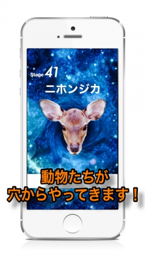 iPhone、iPadアプリ「Animal Faces Touch :: Face to Face Animal Touch Game  〜動物の顔を記憶して早くタッチすることを競うクイズ。Wikiへのリファレンスで動物王国の世界へ。生活の中で動物たちと触れ合おう!〜」のスクリーンショット 2枚目