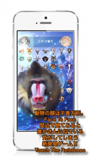 iPhone、iPadアプリ「Animal Faces Touch :: Face to Face Animal Touch Game  〜動物の顔を記憶して早くタッチすることを競うクイズ。Wikiへのリファレンスで動物王国の世界へ。生活の中で動物たちと触れ合おう!〜」のスクリーンショット 1枚目