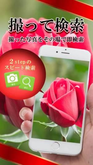 iPhone、iPadアプリ「画像で検索- for iPhone」のスクリーンショット 2枚目