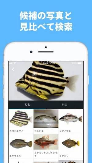 iPhone、iPadアプリ「魚みっけ」のスクリーンショット 2枚目