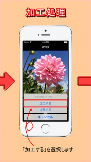 iPhone、iPadアプリ「iPRO - 秘密の写真」のスクリーンショット 2枚目