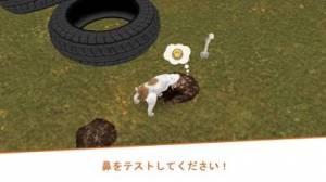 iPhone、iPadアプリ「Dog Hotel - 犬と遊ぶ」のスクリーンショット 5枚目