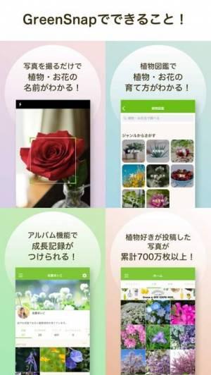 iPhone、iPadアプリ「GreenSnap - 植物・花の名前が判る写真共有アプリ」のスクリーンショット 3枚目