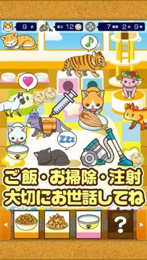 iPhone、iPadアプリ「ねこカフェ~猫を育てる楽しい育成ゲーム~」のスクリーンショット 2枚目