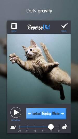 iPhone、iPadアプリ「Reverse Vid –逆にビデオを巻き戻すための編集&Vineやインスタグラムの為に即座に映画をリプレーする」のスクリーンショット 4枚目