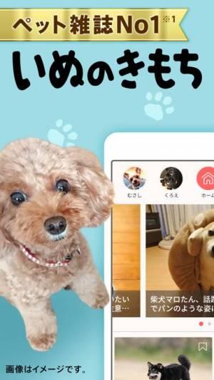 iPhone、iPadアプリ「いぬのきもち・ねこのきもち」のスクリーンショット 1枚目