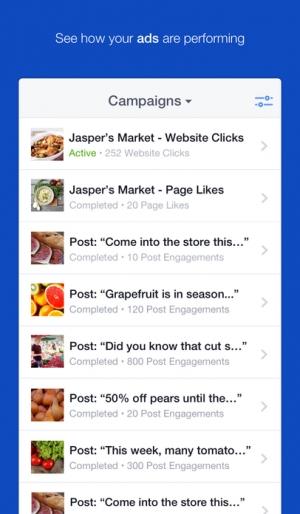 iPhone、iPadアプリ「Facebook広告マネージャ」のスクリーンショット 1枚目