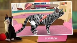 iPhone、iPadアプリ「CatHotel - かわいいネコをお世話して、寄り添い、一緒に遊ぼう」のスクリーンショット 3枚目