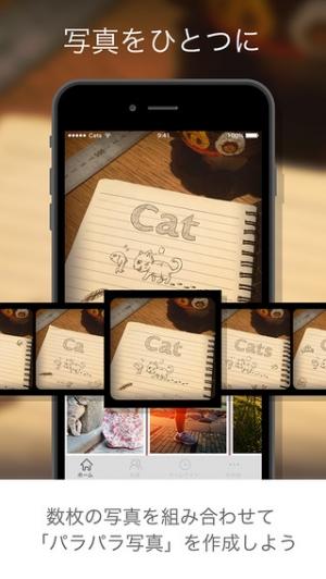 iPhone、iPadアプリ「Cats パラパラ写真ミニアルバムSNS」のスクリーンショット 1枚目