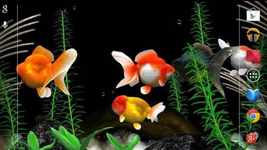 「金魚 Gold Fish 3D ライブ壁紙」のスクリーンショット 2枚目
