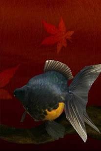 「金魚 Gold Fish 3D ライブ壁紙」のスクリーンショット 3枚目