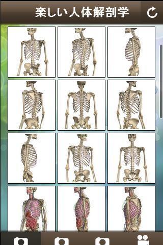 「楽しい人体解剖学」のスクリーンショット 3枚目