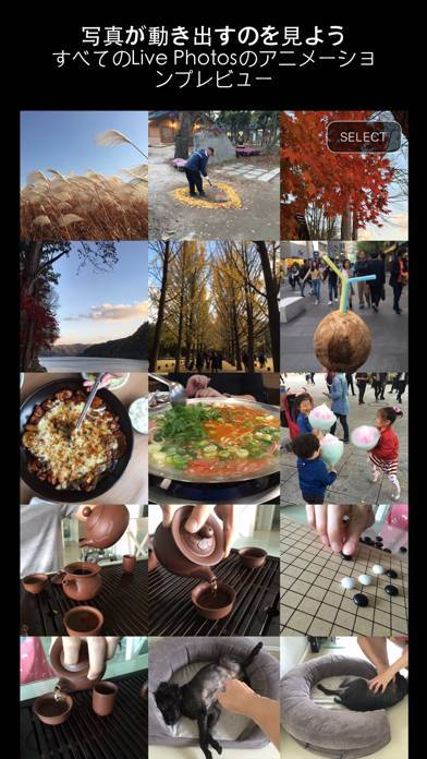 「Alive - Create & Share Animated Collages for Live Photos and Videos」のスクリーンショット 1枚目