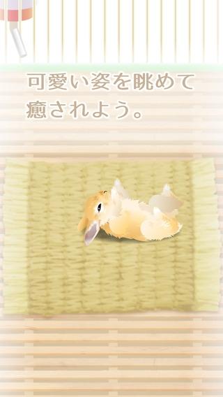 「癒しのウサギ育成ゲーム(無料)」のスクリーンショット 3枚目