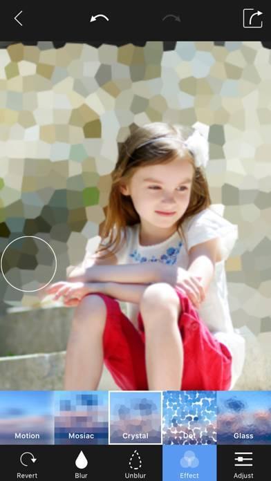 「ぼかし背景 写真加工 - 簡単ぼかし & モザイク 加工」のスクリーンショット 2枚目