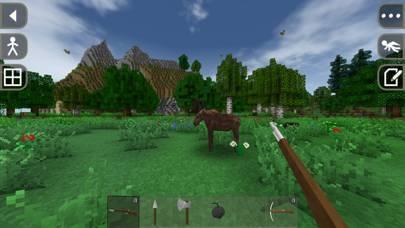 「Survivalcraft 2」のスクリーンショット 3枚目