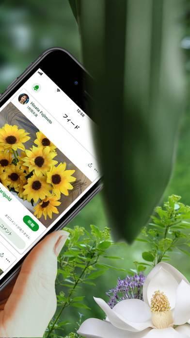「PlantSnap Pro: Identify Plants」のスクリーンショット 2枚目