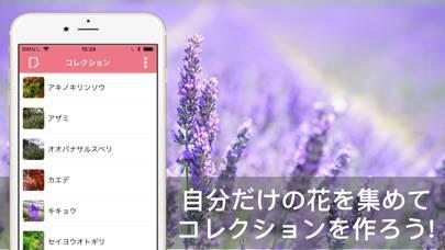 「花・植物好きが集まる写真共有・図鑑アプリ, FLOWERY」のスクリーンショット 3枚目