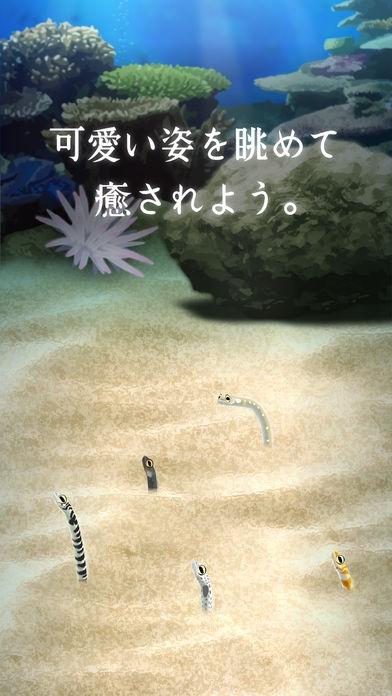 「癒しのチンアナゴ育成ゲーム - 癒しの育成ゲームシリーズ」のスクリーンショット 3枚目