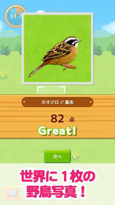 「鳥マスター!」のスクリーンショット 1枚目