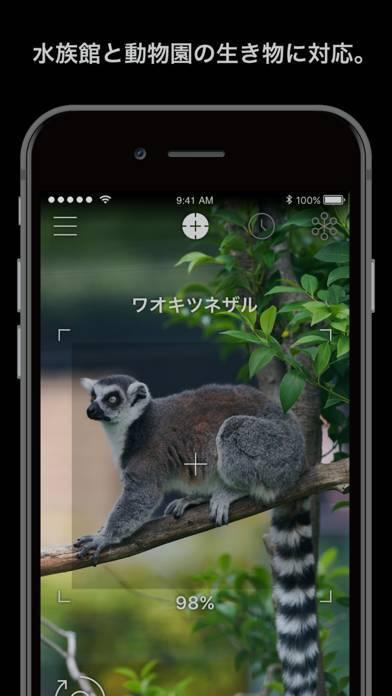 「LINNÉ LENS - 水族館と動物園のARガイド」のスクリーンショット 1枚目