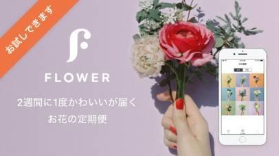 「FLOWER かわいいが届くお花便」のスクリーンショット 1枚目