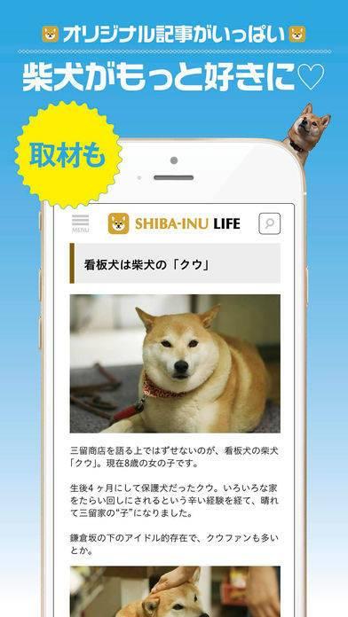 「柴犬ライフ:100%柴犬情報メディア」のスクリーンショット 3枚目