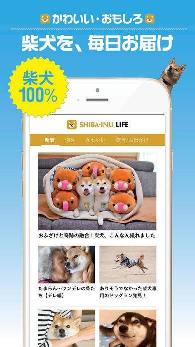 「柴犬ライフ:100%柴犬情報メディア」のスクリーンショット 1枚目