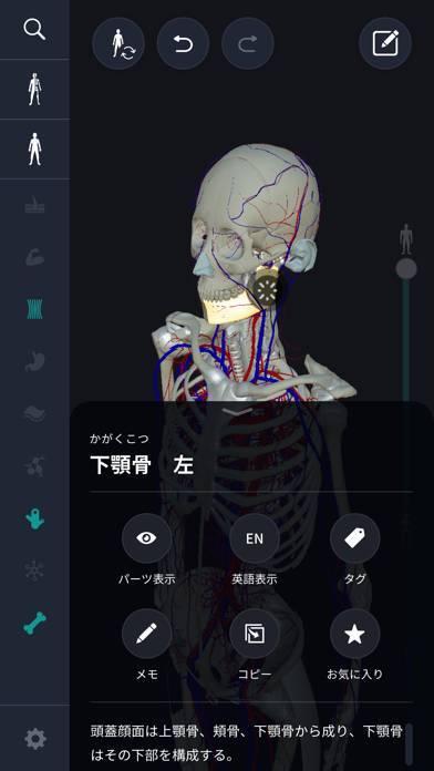 「3D人体解剖学 teamLabBody2020」のスクリーンショット 3枚目