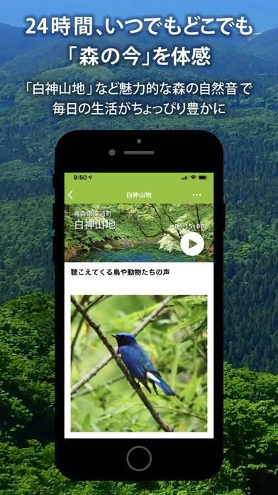 「Forest Notes –ライブで聴く森の自然音」のスクリーンショット 1枚目
