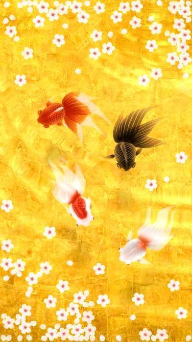 「Wa Kingyo - 和金魚 -」のスクリーンショット 1枚目