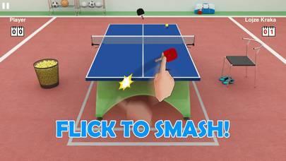 「Virtual Table Tennis」のスクリーンショット 1枚目