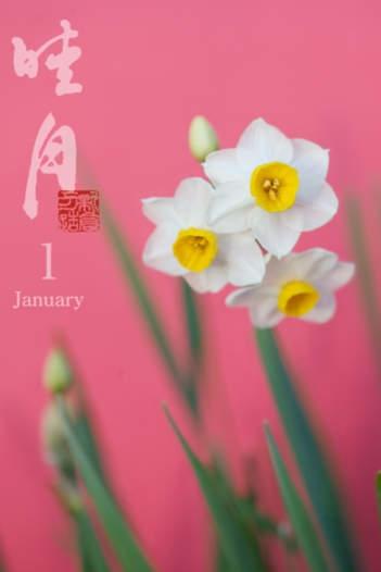 「はなといろカレンダー - そよ風に揺れる美しい花たち - 2012」のスクリーンショット 1枚目