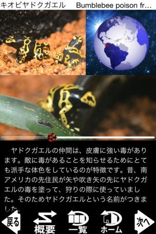 「動く!動物図鑑 mini」のスクリーンショット 3枚目