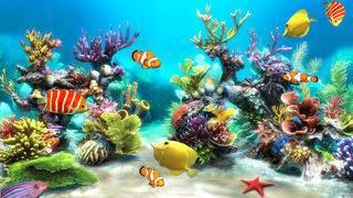 「Sim Aquarium 3D」のスクリーンショット 2枚目