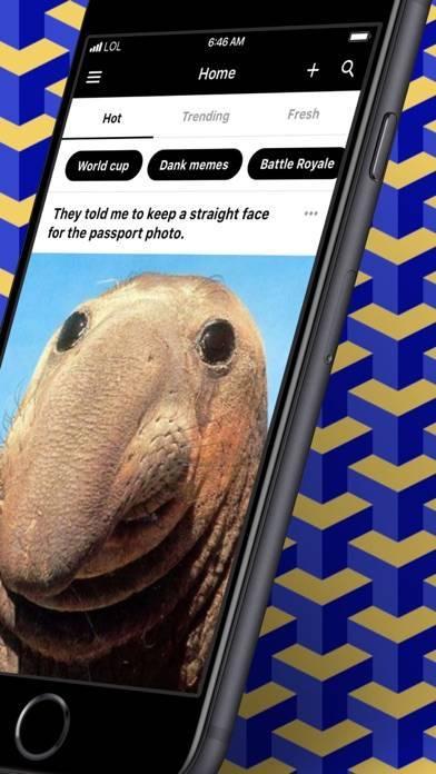 「9GAG: Best LOL Pics & GIFs」のスクリーンショット 2枚目